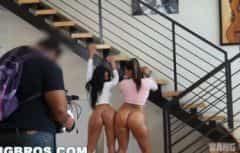 Deux belles filles bronzées ont des bas spéciaux