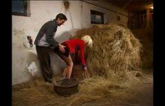 Un Agriculteur Baise Un étudiant En Agronomie